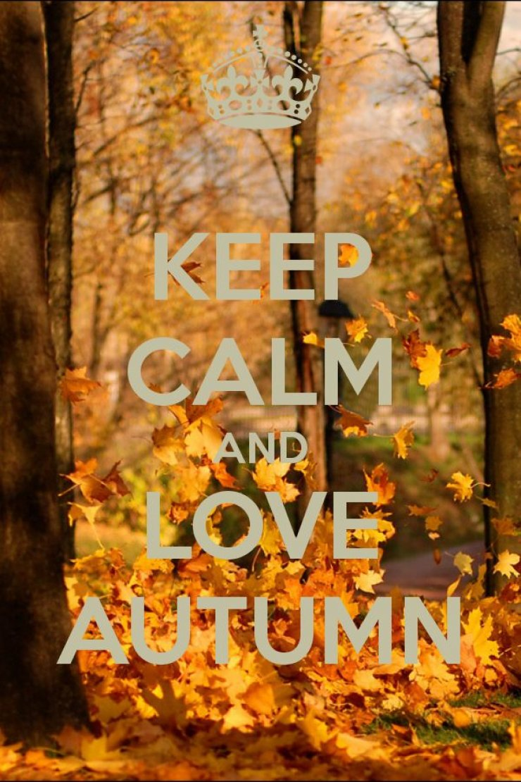 Keep calm and love autumn